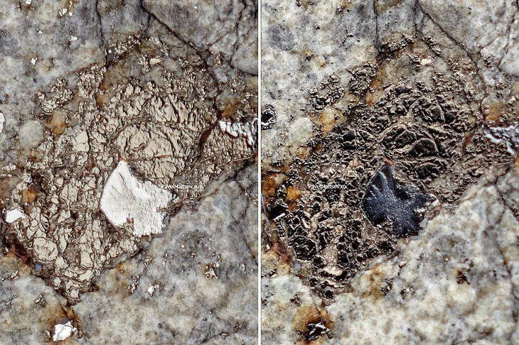 Фото распиленного челябинского метеорита (4)