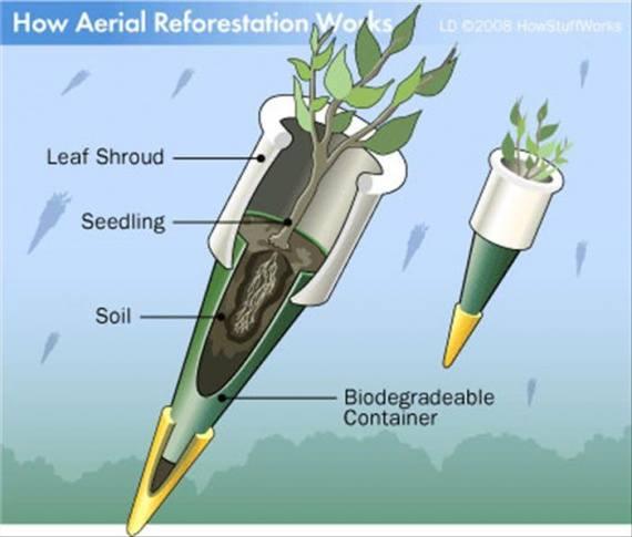 Бомбардировка деревьями — отличное решение (2)